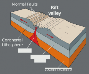 Schematic slice through the East African Rift Valley. The upper mantle (at about 40 km depth) is upwelling due the extension and is the ultimate source of erupting carbonatite lavas like in Southern Malawi (after: www.geogrify.net)